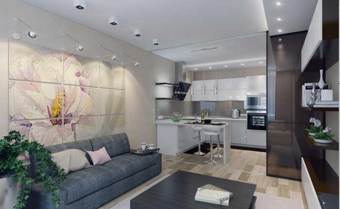 Дизайн кухни для квартиры-студии (еврокухня)